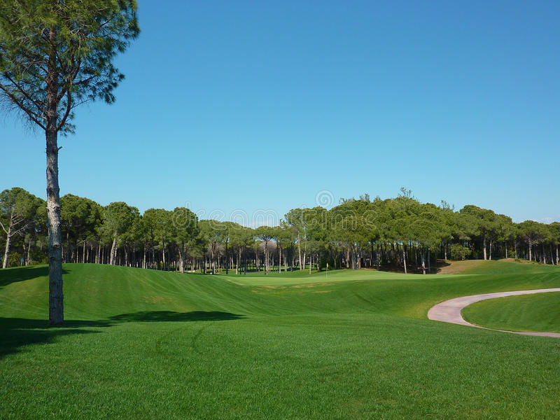 Golf course road in Turkey 2. Golf course road and pine trees in Belek Turkey stock photos