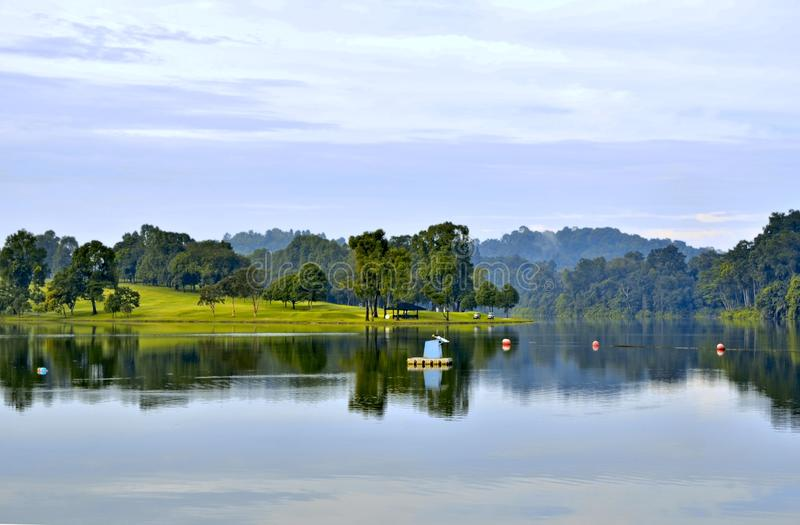 Golf Course Singapore. Early morning at Singapore Island Country Club golf course with water view of Lower Pierce Reservoir stock images