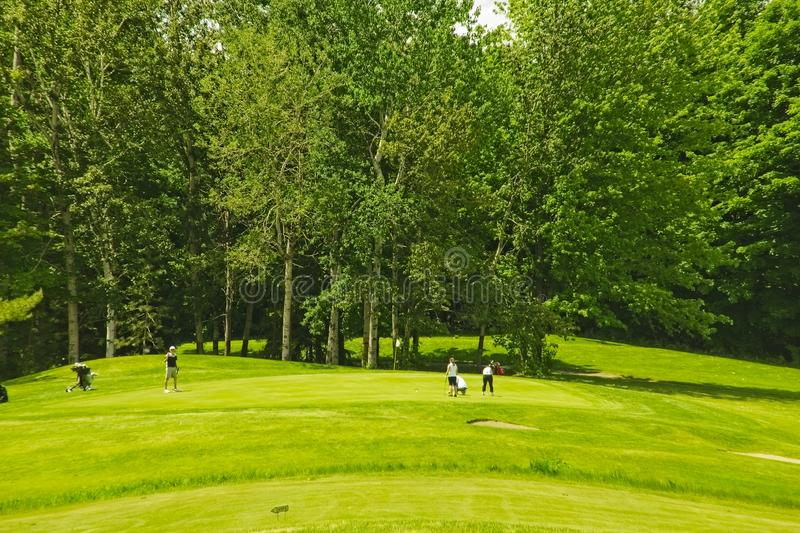 A golf course on a sunny day royalty free stock image