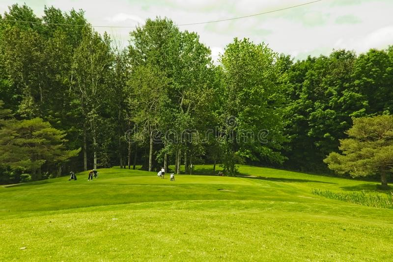 A golf course on a sunny day royalty free stock photography