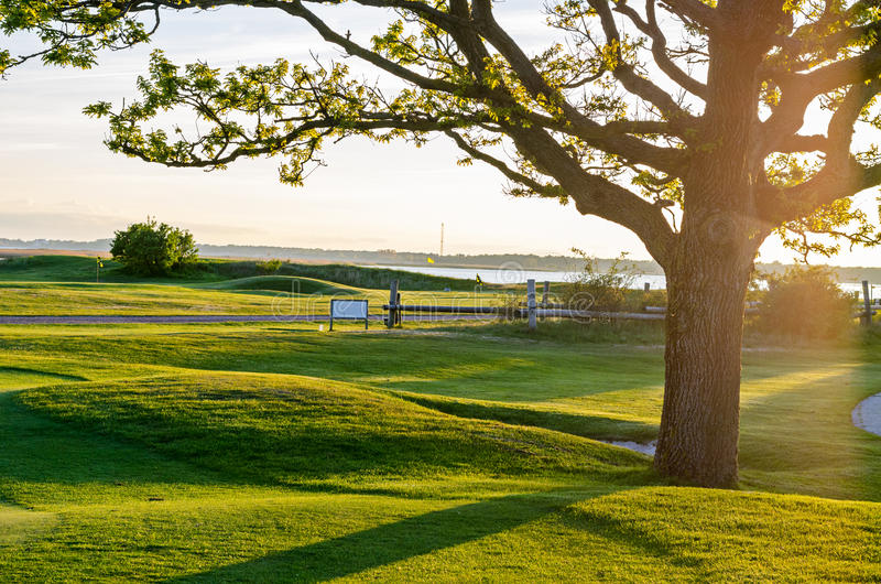 Download Golf course stock photo. Image of course, natural, clean - 40714130