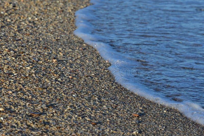 Golf en zeeschelpen stock foto's