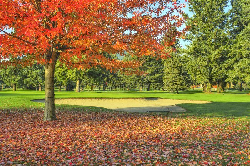 golf för höstkursfall arkivbild