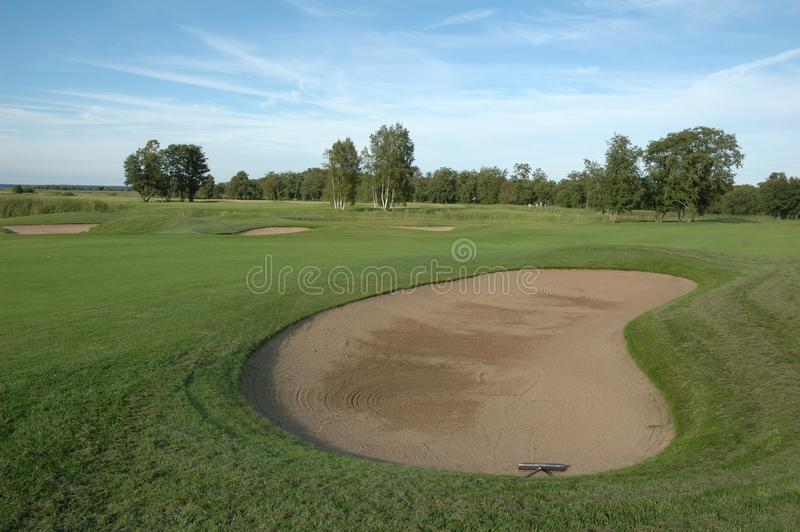 Download Golf field stock photo. Image of birdie, club, action - 21695838