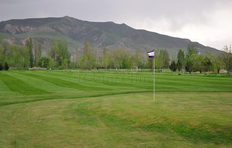 Download Golf field with flag stock image. Image of leisure, lawn - 30505311