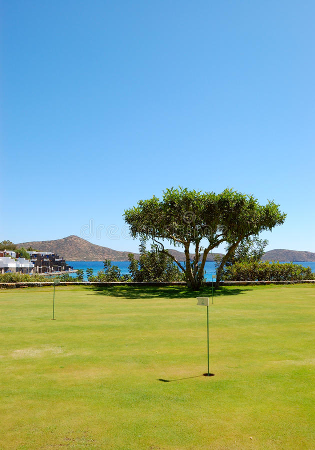 Download Golf Field And Tree At Luxury Hotel Stock Image - Image: 14872021