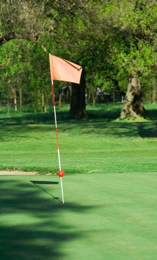 Golf flag royalty free stock photo