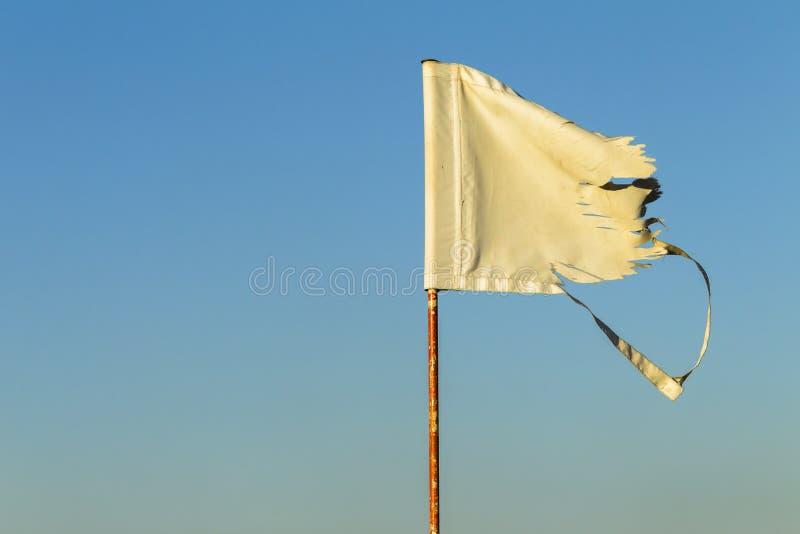 Golf Flag Pin Shredded stock photo