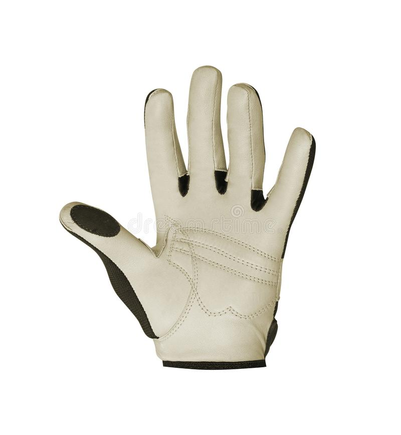 Golf Glove on white. Background royalty free stock image