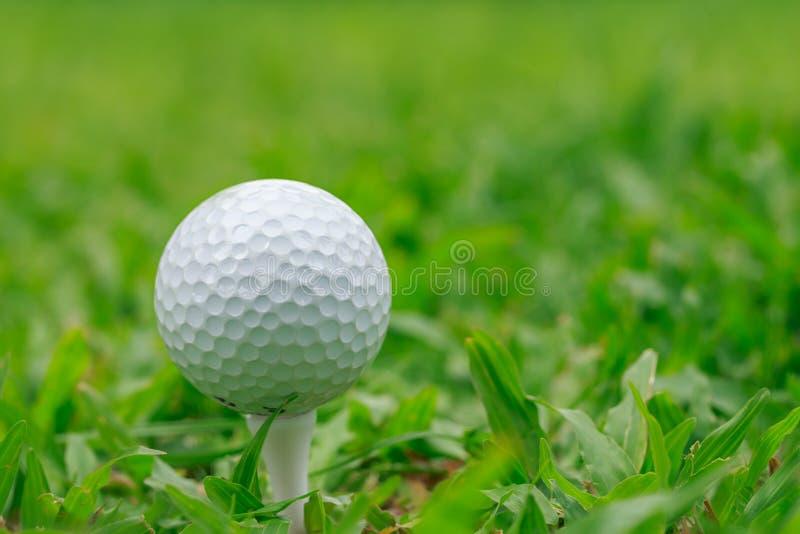 Golf On Grass Rough Stock Photo
