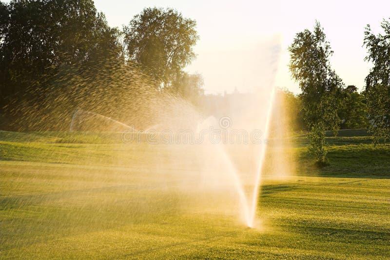 Golf Grass Sprinkler. Water Sprinkler royalty free stock photo