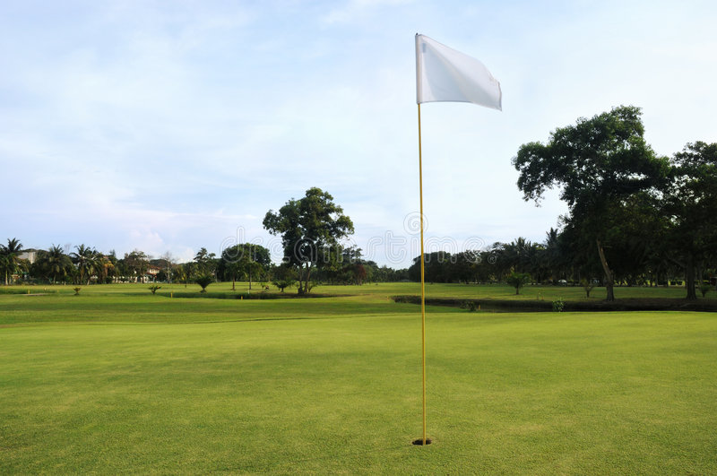 Download Golf Green stock photo. Image of landscape, outdoor, hole - 5539346