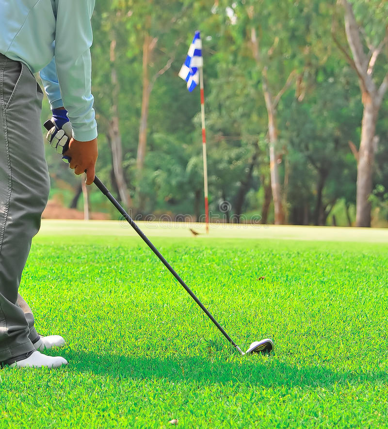Free Golf Green Hole Course Man Putting Ball Royalty Free Stock Image - 17541866