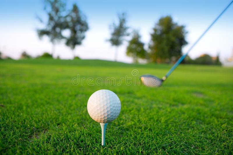 Golf green hole course man putting short ball royalty free stock images