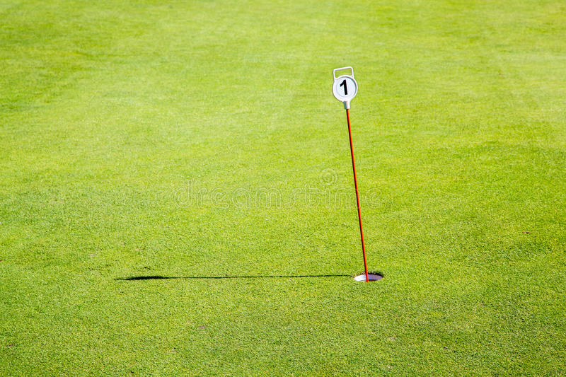 Download Golf green hole one stock image. Image of healthy, colour - 31854315