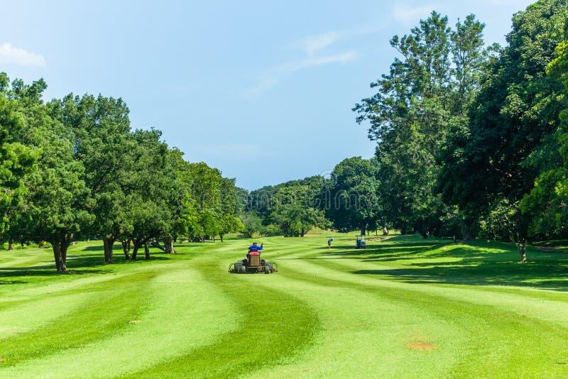 Golf Groene Fairway Machine die Toneelcursus snijden royalty-vrije stock afbeelding