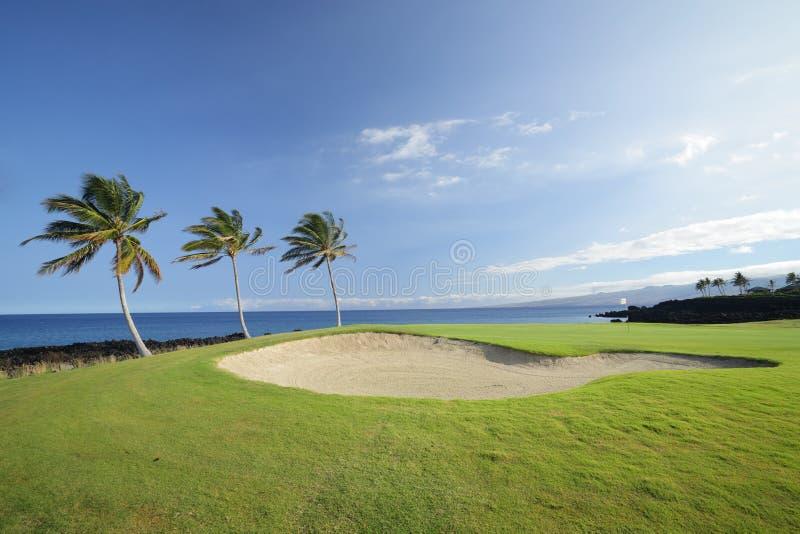 golf Hawaï de cours de champions image stock