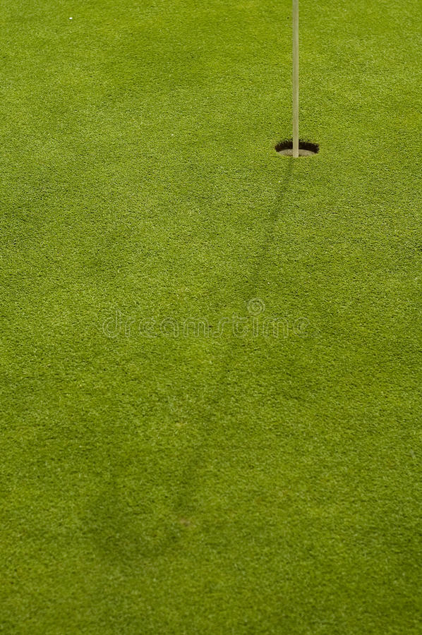 Free Golf Hole And Grass Stock Photography - 31016722