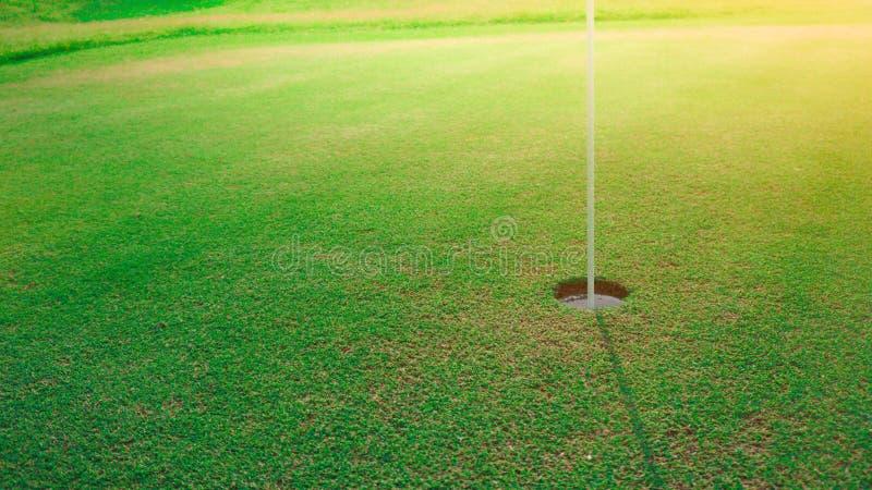 Golf hole on green put royalty free stock photo