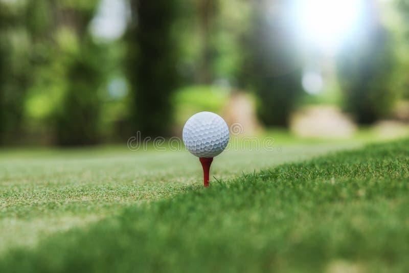 Golf i piłka przygotowywający obrazy royalty free