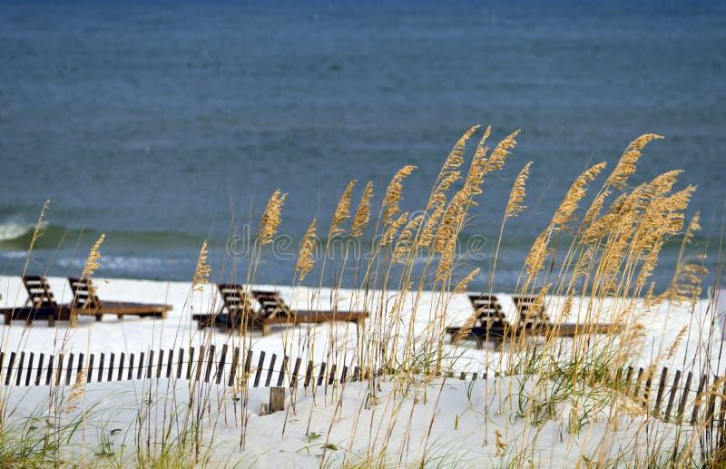 Golf-Küste-Szene lizenzfreie stockbilder