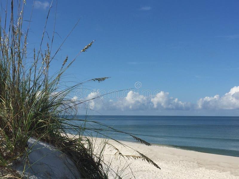 Golf-Küsten-Florida-Strand-Szene lizenzfreie stockfotografie