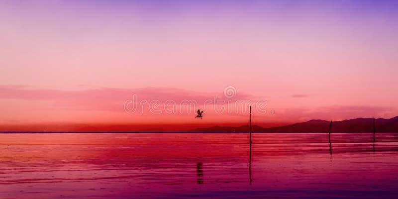 Golf Meerblickdämmerungs-Sonnenuntergangs Paria Trinidad und Tobago der bunten Szene des panoramischen stockfoto