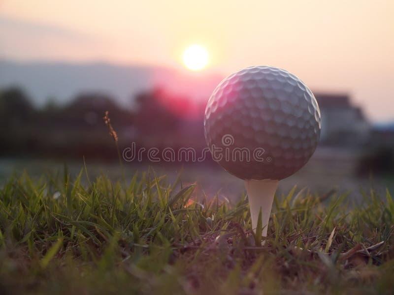 Golf na białym trójniku Na zielonym gazonie tam jest światłem słonecznym fotografia royalty free