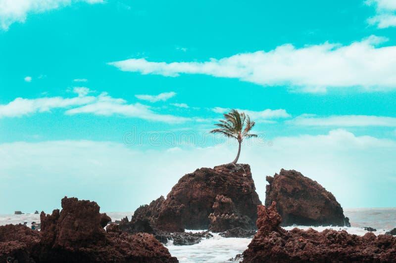 Golf op de blauwe hemel van de strand zonnige dag royalty-vrije stock foto