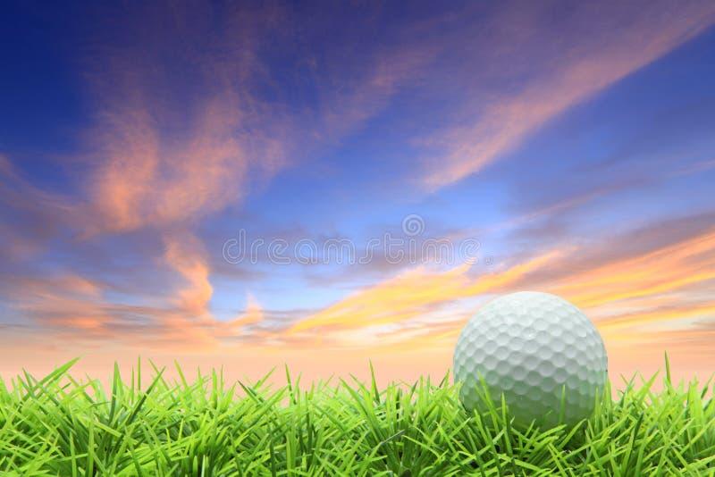 Golf op gras stock afbeelding