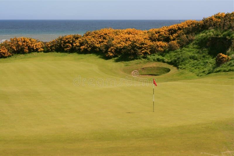 Golf op het overzees stock fotografie