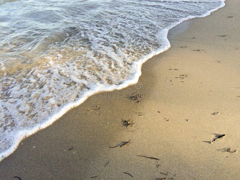 Golf op het strand stock foto's