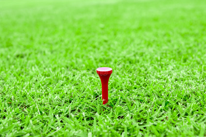 Golf pegs on a tee in green grass course royalty free stock images