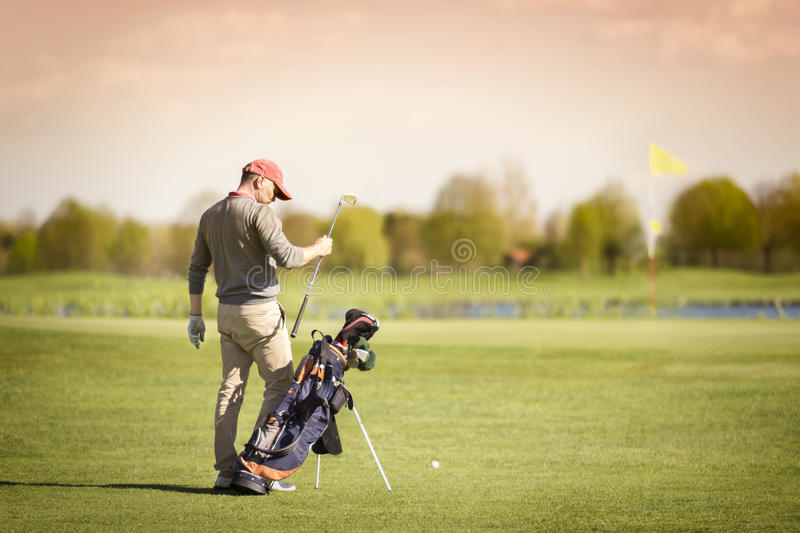 Golf player pulling out club on green. Male golf player taking out golf club from bag, with green and flag in background royalty free stock photos