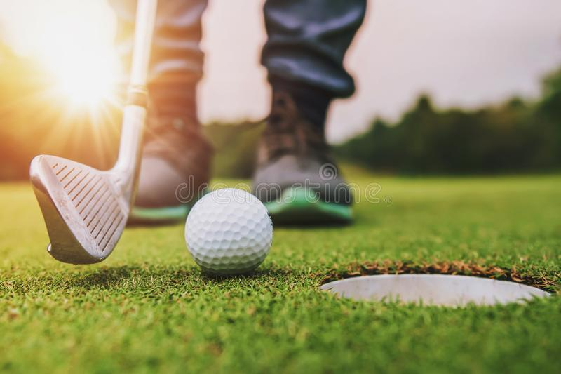 golf player putting golf ball into hole royalty free stock photos