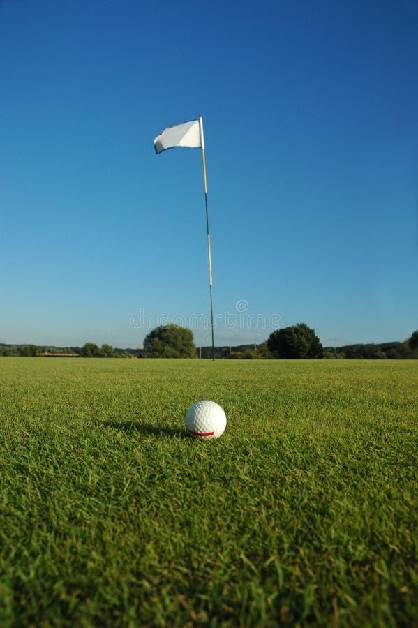 golf pola zdjęcia royalty free