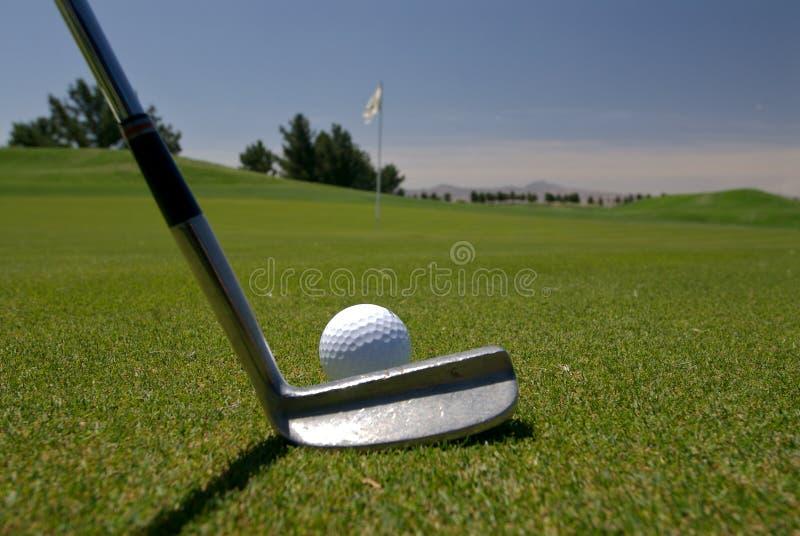 Golf Putt royalty free stock image