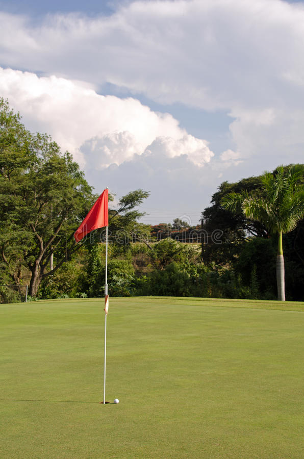 Download Golf putting green stock image. Image of golfing, putt - 34348453
