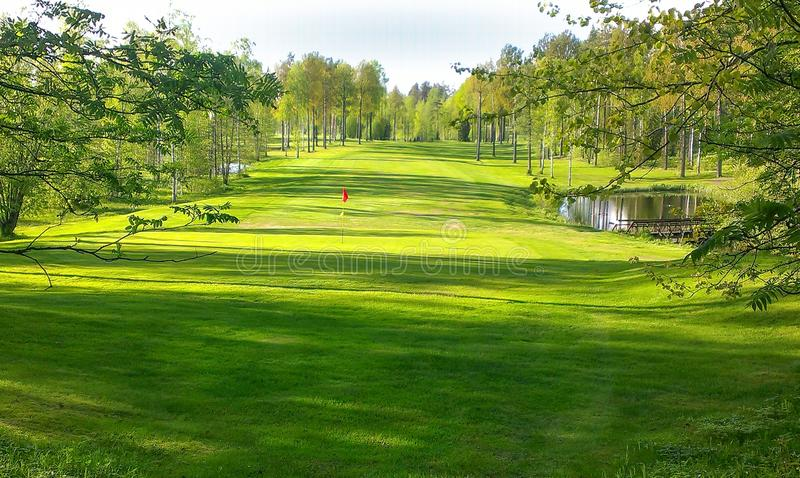 Golf putting green in forest stock photos