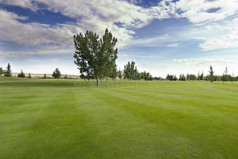 golf Saskatchewan obraz royalty free