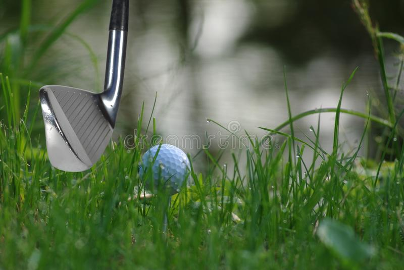 Golf stick and ball. Golf stick on moment before hitting in ball stock photos