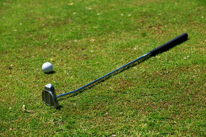 Golf-stick and ball. The golf-stick and ball close up in grass royalty free stock photos