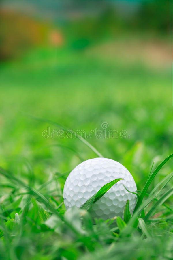Golf sur l'herbe rugueuse images stock