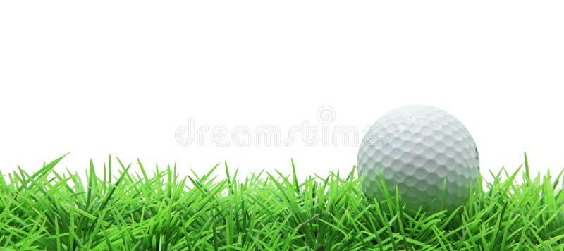 Golf sur l'herbe verte sur le blanc image stock