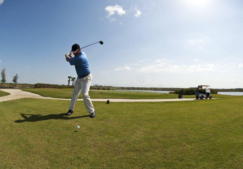Golf Swing royalty free stock photo