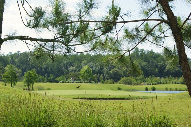 Golf-Tag stockbild