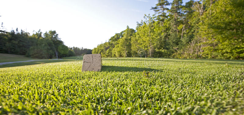 Download Golf tee box on fairway stock photo. Image of trees, wide - 28391398