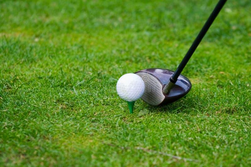 golf teeing obraz stock