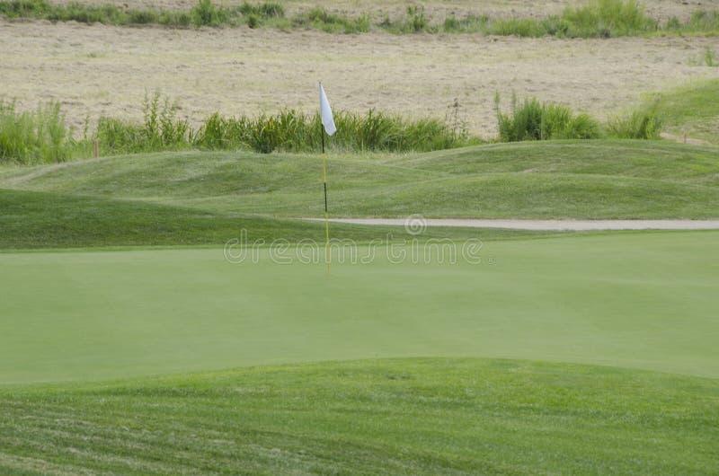 Golf turf royalty free stock photo