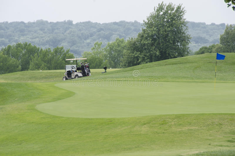 Golf turf stock images